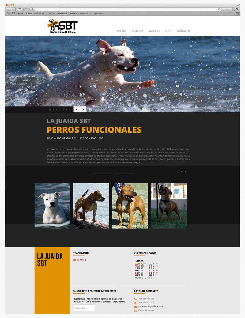 diseño de paginas web almeria