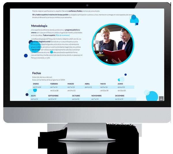 desarrollo web creacion pagina moderna
