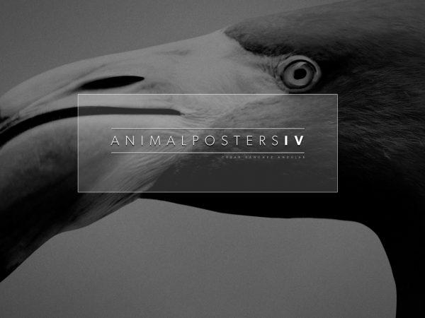 ANIMAL POSTER lokoloko